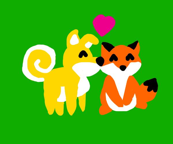 Dog loves fox