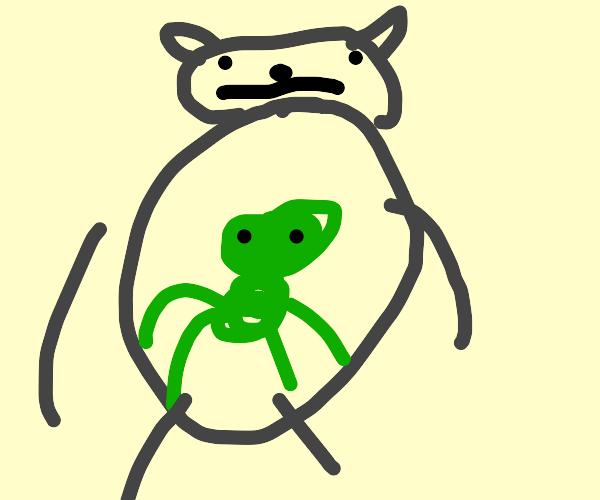 alien baby inside of cat belly