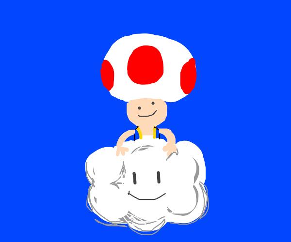 Toad stole Lakitu's cloud