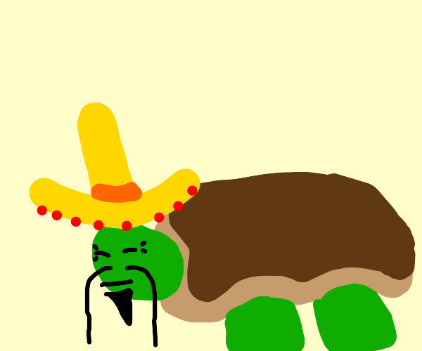 Chinese turtle with a Mexican hat and beard