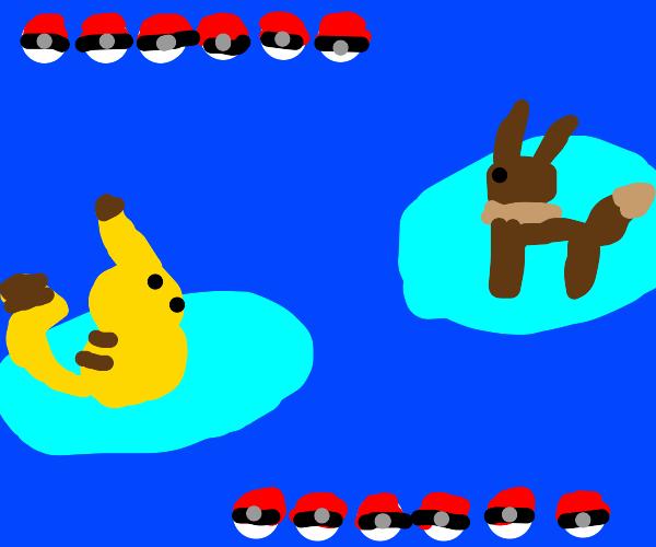 A pokemon battle.