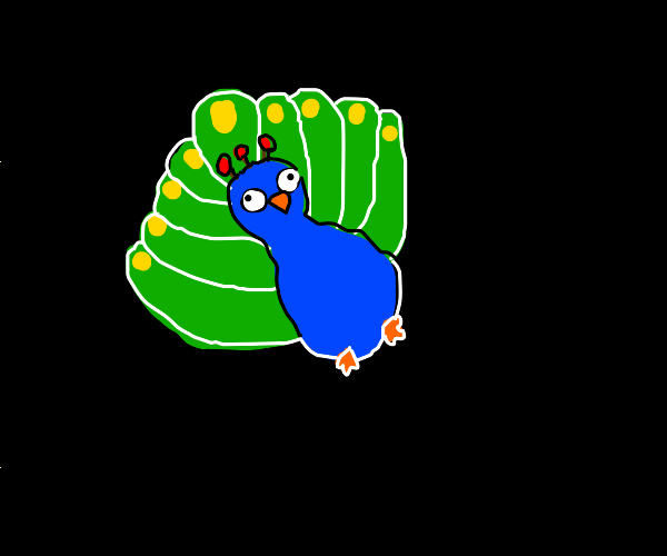 Peacock in the void
