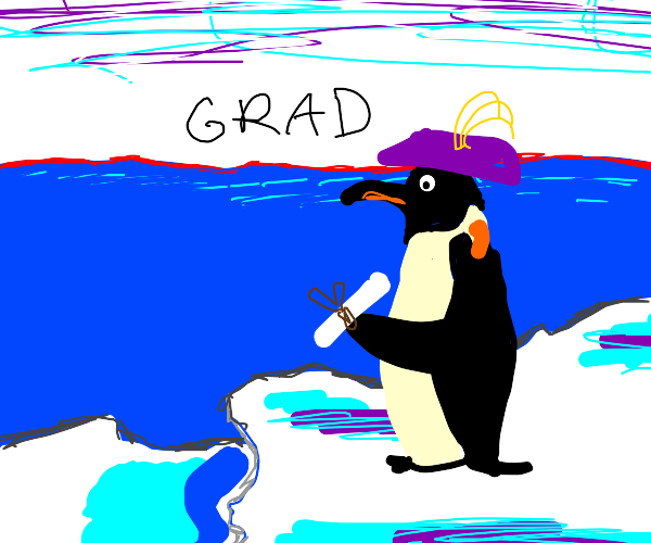 Scholar penguin