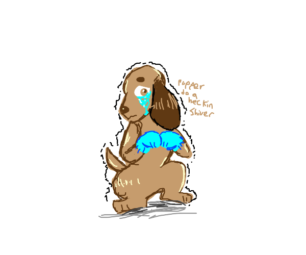 sad dog with mittens is cold
