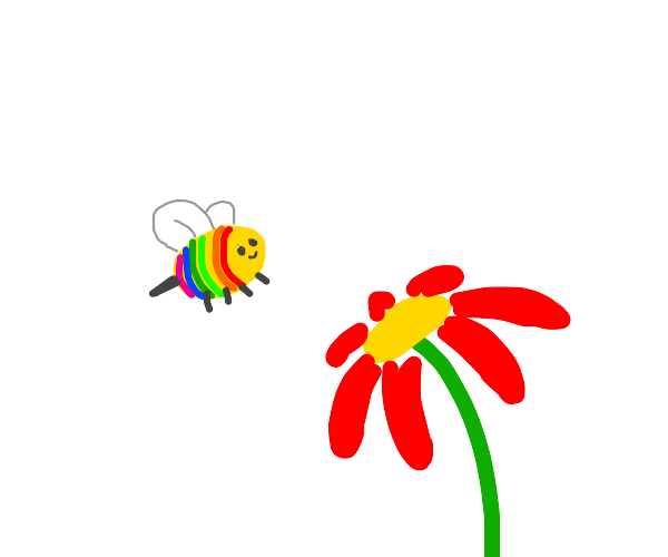 rainbow bee and red flower