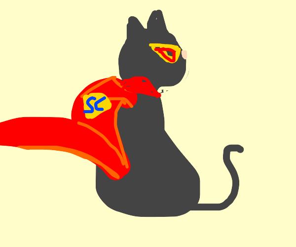 A feline superhero