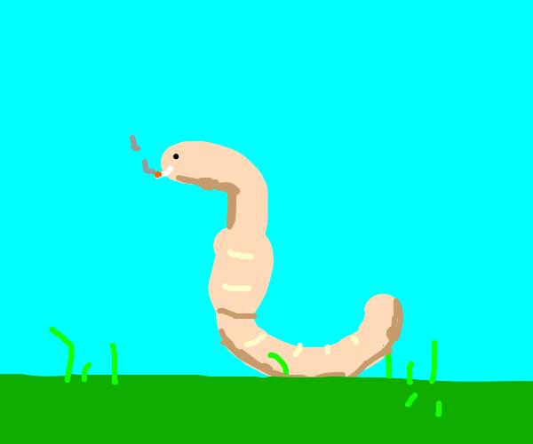 worm smoking
