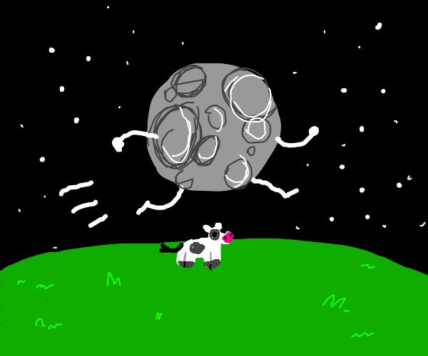 A moon jumpig over a cow