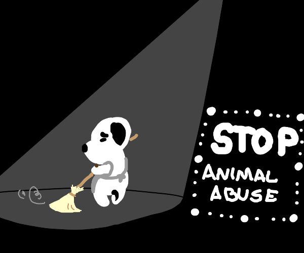 dog cleans house (stop animal abuse)