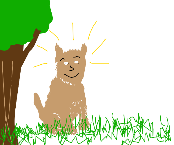 Dog with human face next to a tree is shining