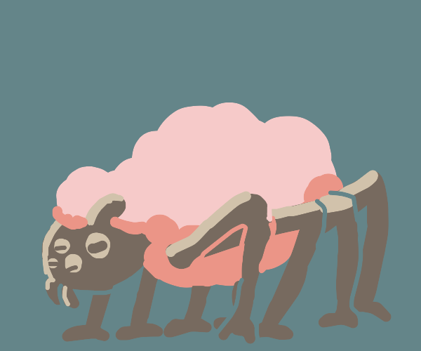 Forget Spiderpig, here's Spidersheep!