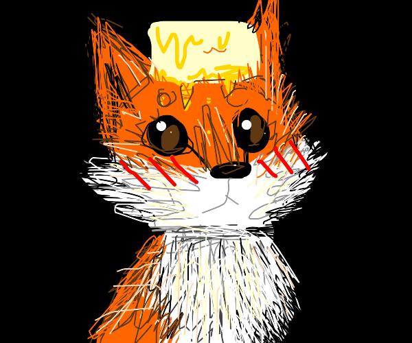 Happy fox wearing butter on its head