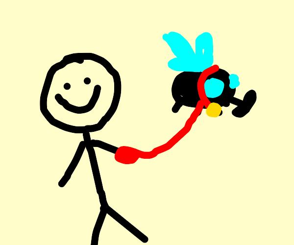 Man has a giant fly on a leash