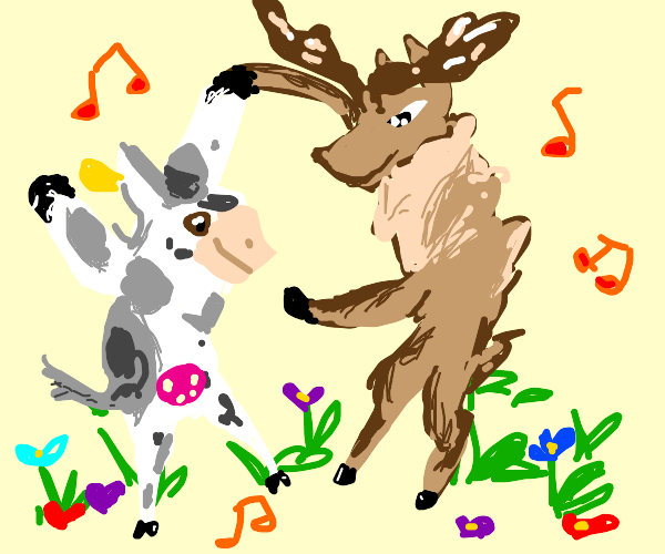 Cow and moose dancing