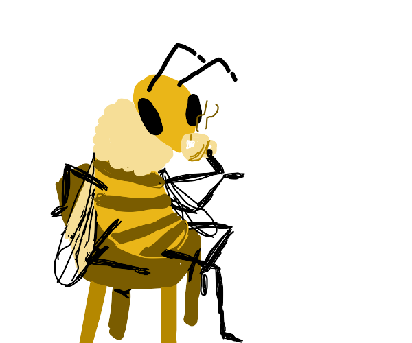 Bee drinking tea