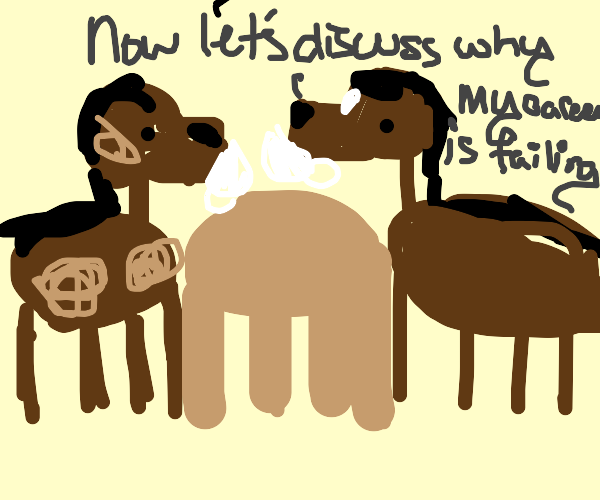 Two horses go out for coffee
