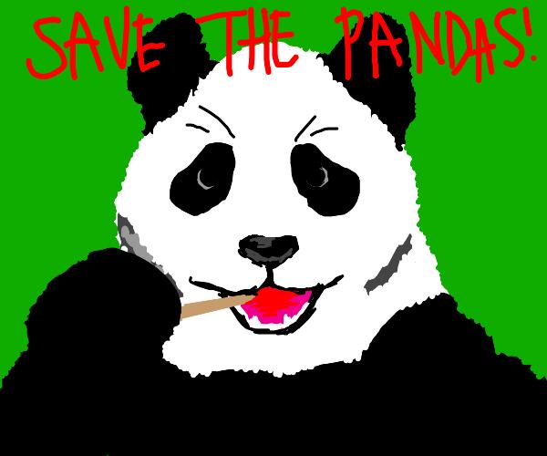Save the pandas ! ! !