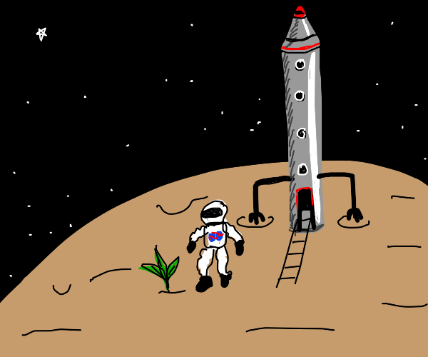 A spaceship discovering a liveable planet.