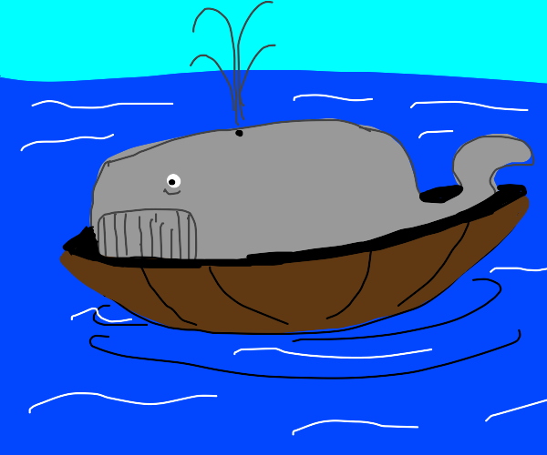 Whale on boat