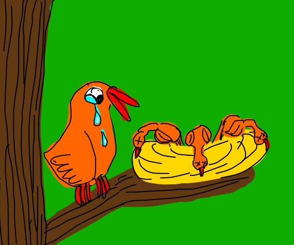small bigbird cries over their nest deadbabys