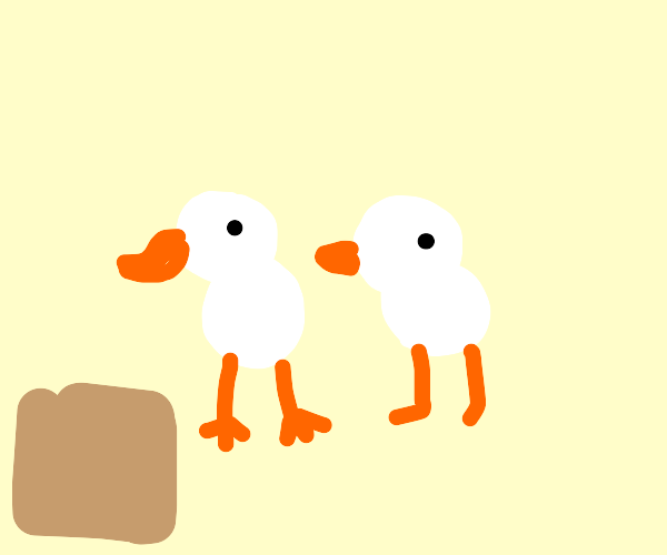 2 Ducks with a 2 Box