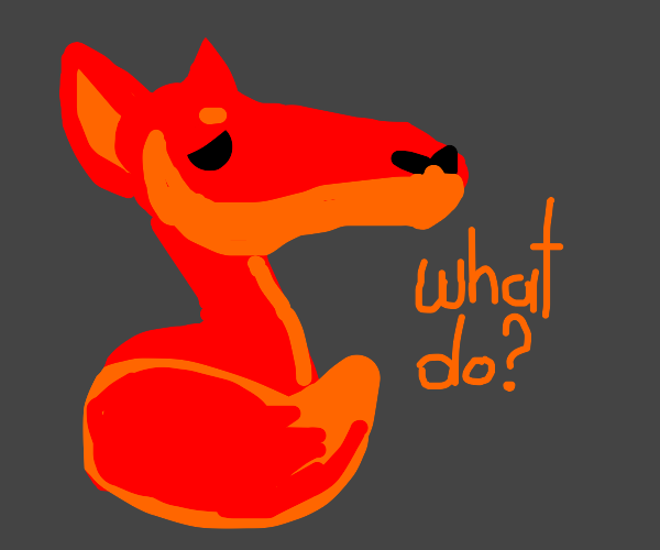 Red fox asking himself what to do