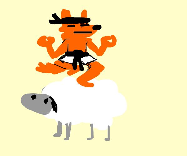 ninja fox poses on top of giant fluffy sheep