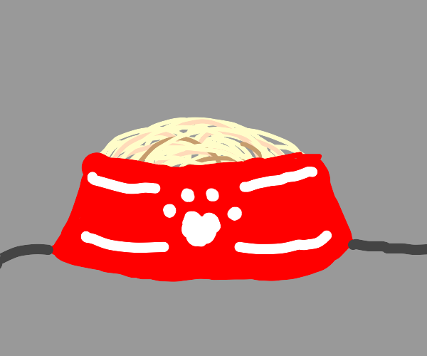 Noodles in a dog bowl