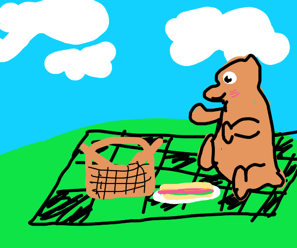 picnic with bear chan