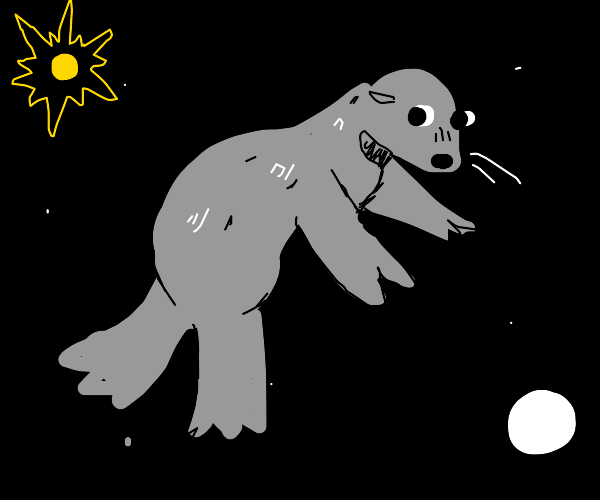 Sea dog in space