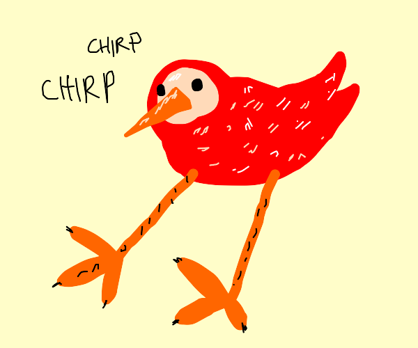 Red bird with large legg