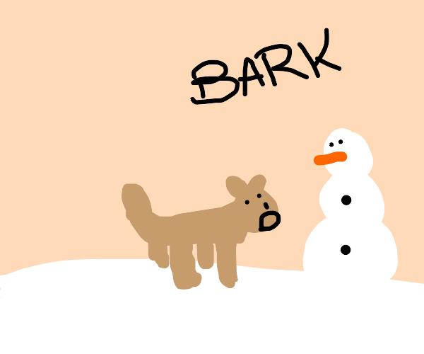 Dog barks at snowman