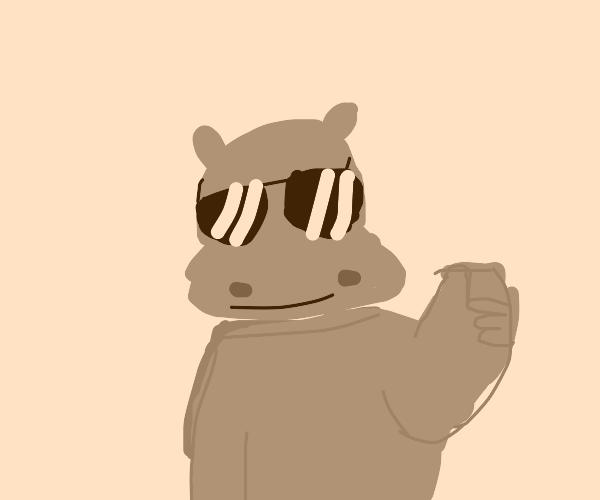 Cool hippo