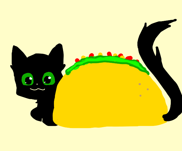 Best kitty taco EVER.