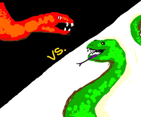 Snakes & Snakes