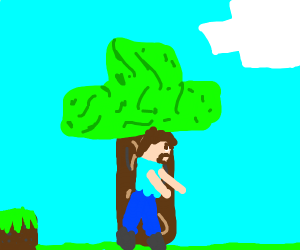 Steve in minecraft