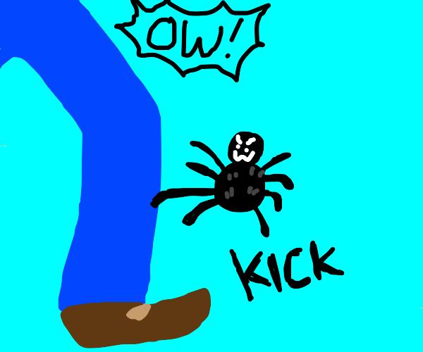 spider karate kicks man