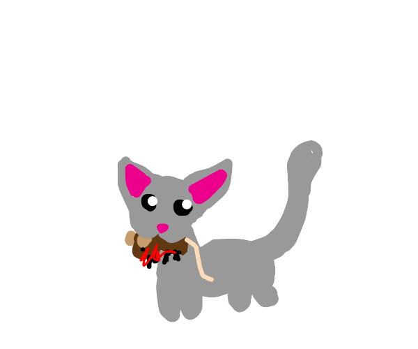 Kitty bwingz pwezent 4 yew