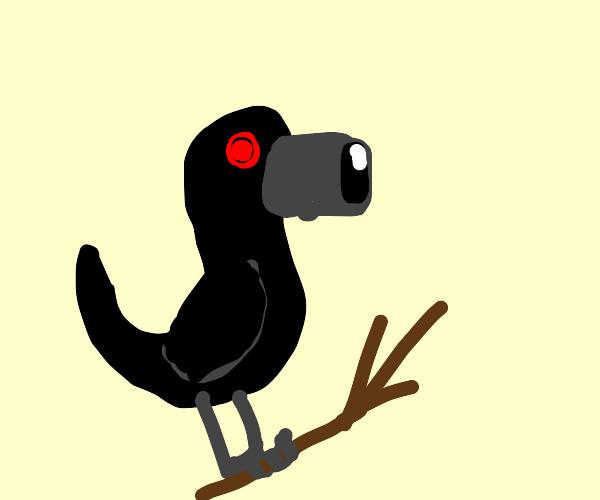 Spy crow