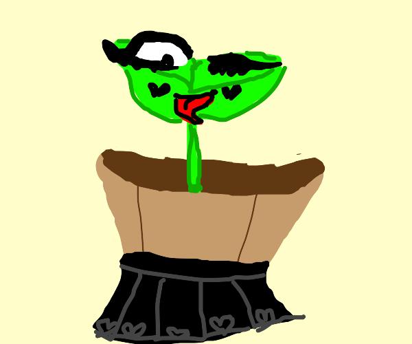 e girl plant