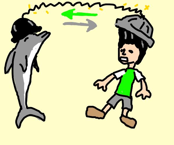Dolphin body swap