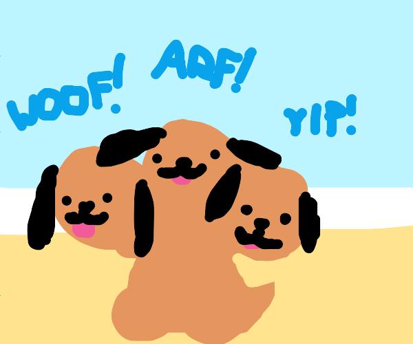 Cerberus puppy dog