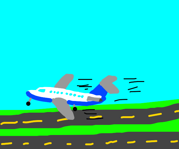 Airplane lands on the highway