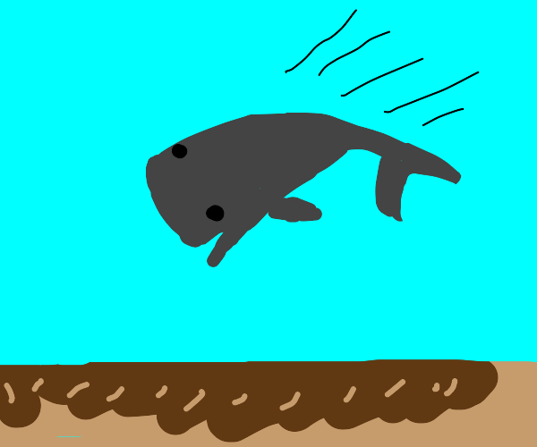 whale dives into mud