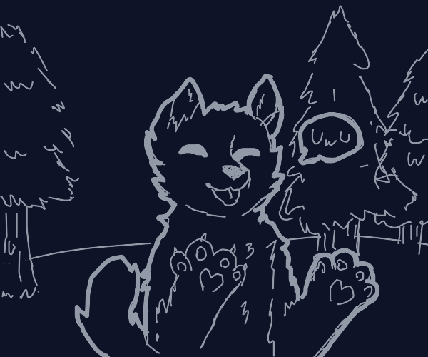Furry creature in the forest at night