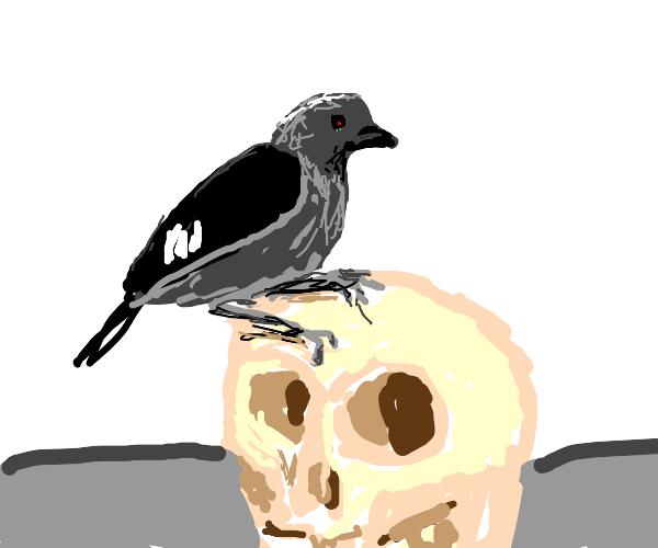 Terminator bird