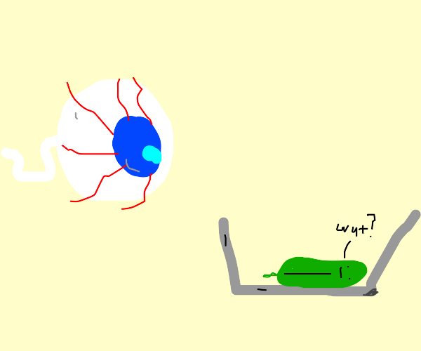 Eyeball watches pieces of lettuce
