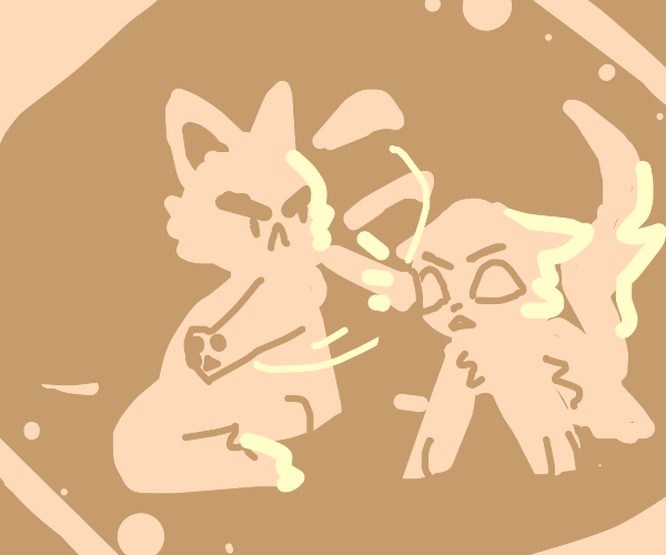 Angry Cats Fighting To the Death