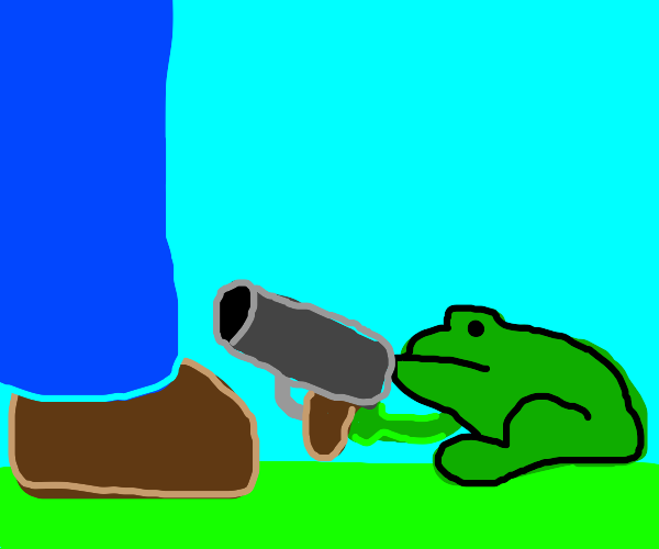 frog with a shotgun