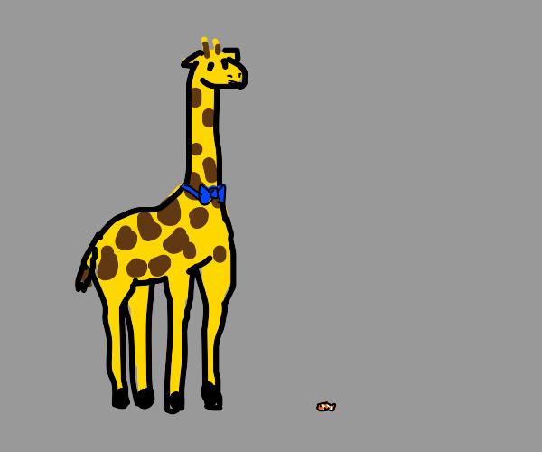 A giraffe with a bowtie nezt to a clown fish